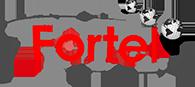 Fortel Telecomunicações | soluções eficientes em sistemas de telefonia, rede de dados e segurança eletrônica